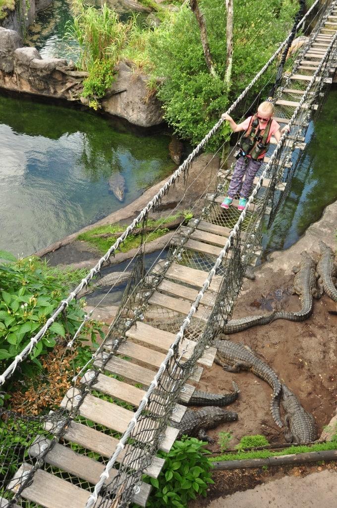 Imogen and the Crocs