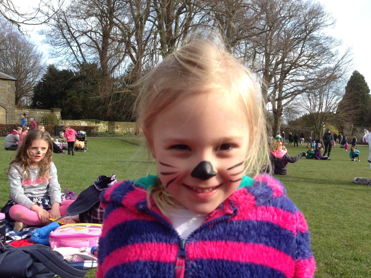 Wallington Hall Face Painting
