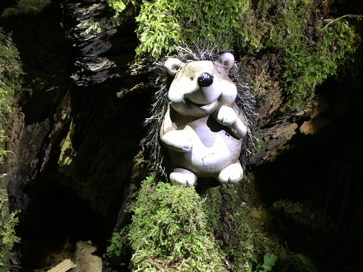 Night Geocache