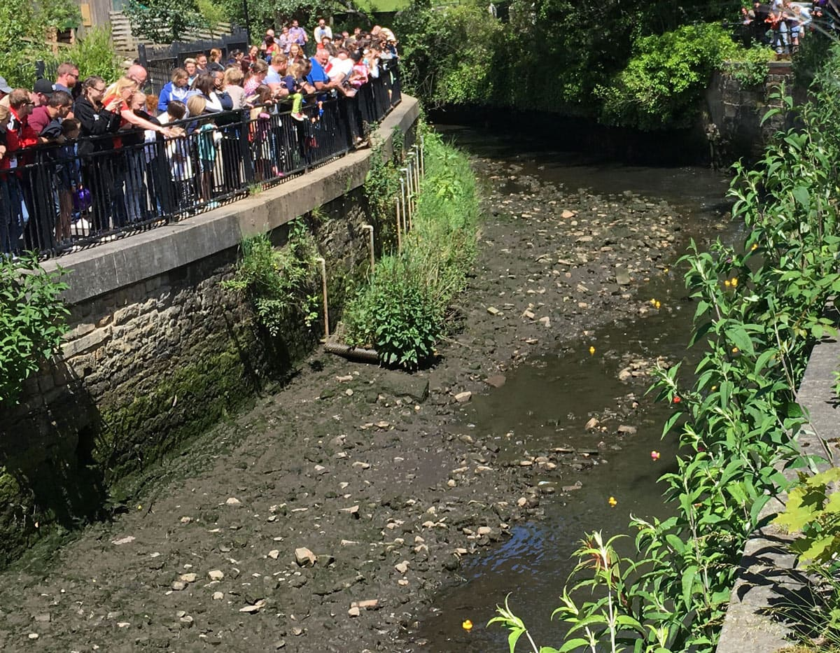 Ouseburn Duck Race