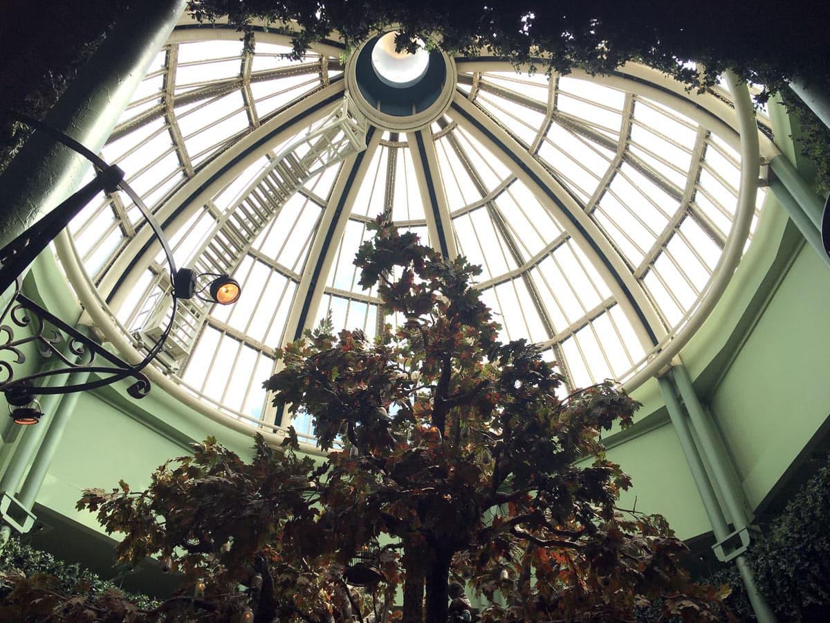 The Botanist Tree