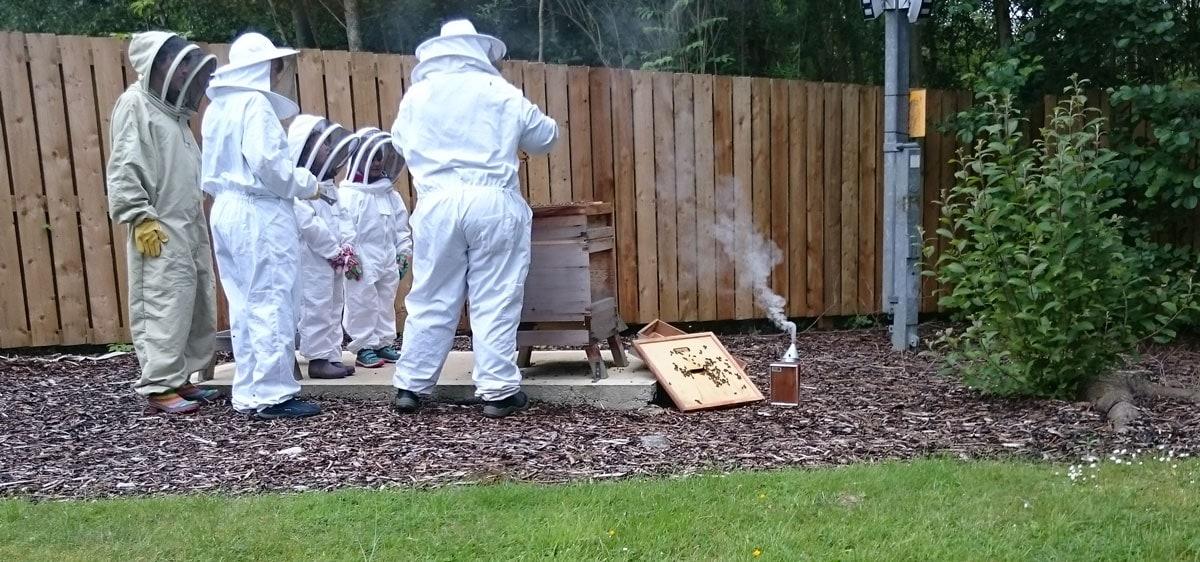 Bees' Needs Week