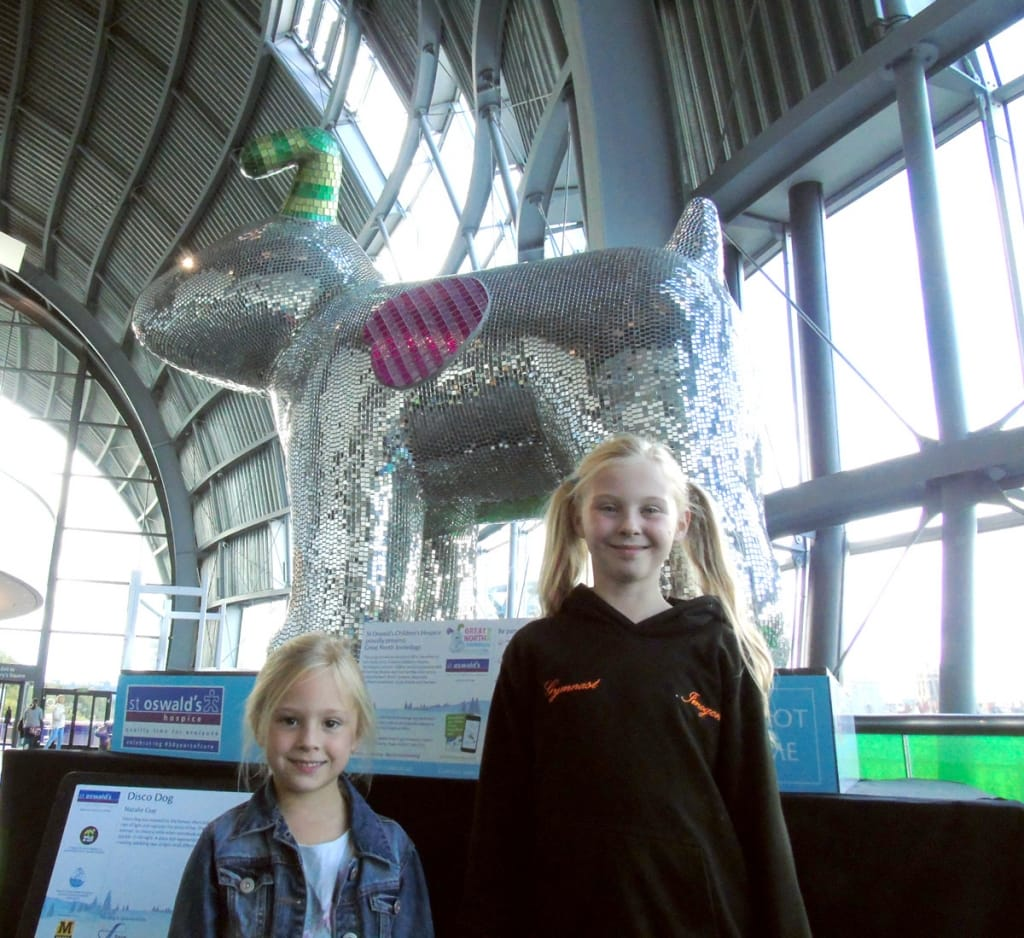 Great North Snowdogs - Disco Dog