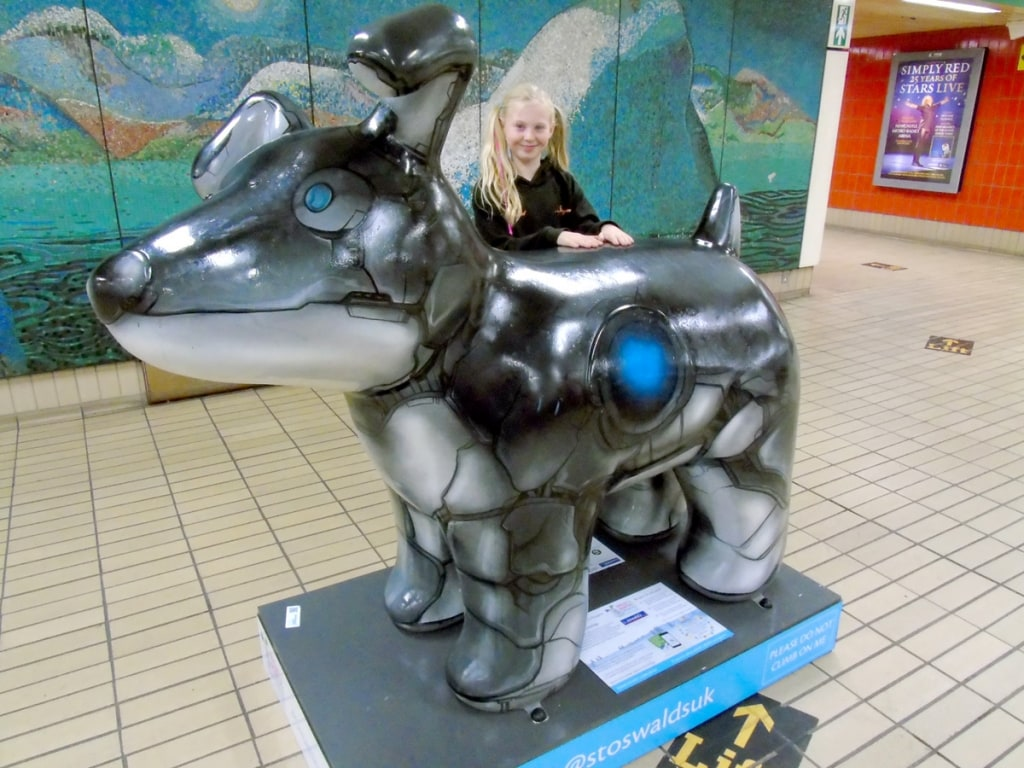 Great North Snowdogs - MOJO