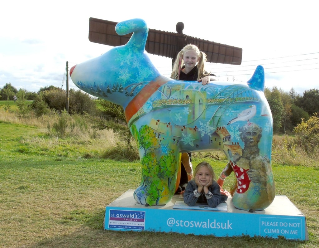 Great North Snowdogs - Dog on the Tyne