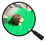 Hidden Lego Hedgehog