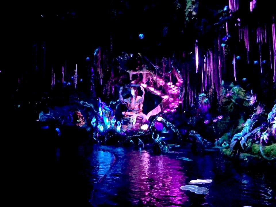 Na'vi River Journey Disney's Animal Kingdom