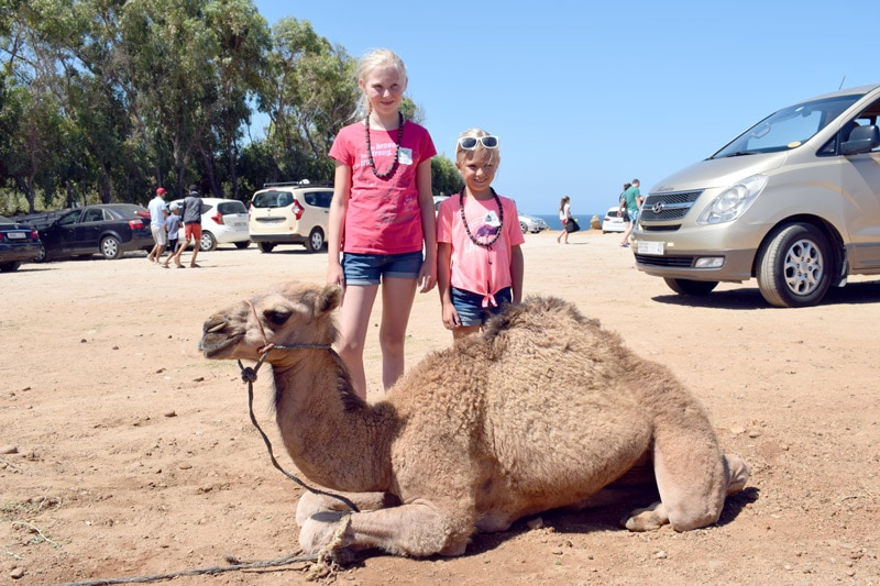 A Day trip to Morocco