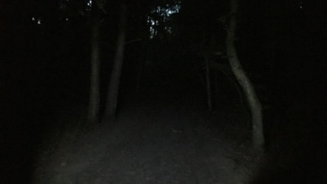 Night Geocaching