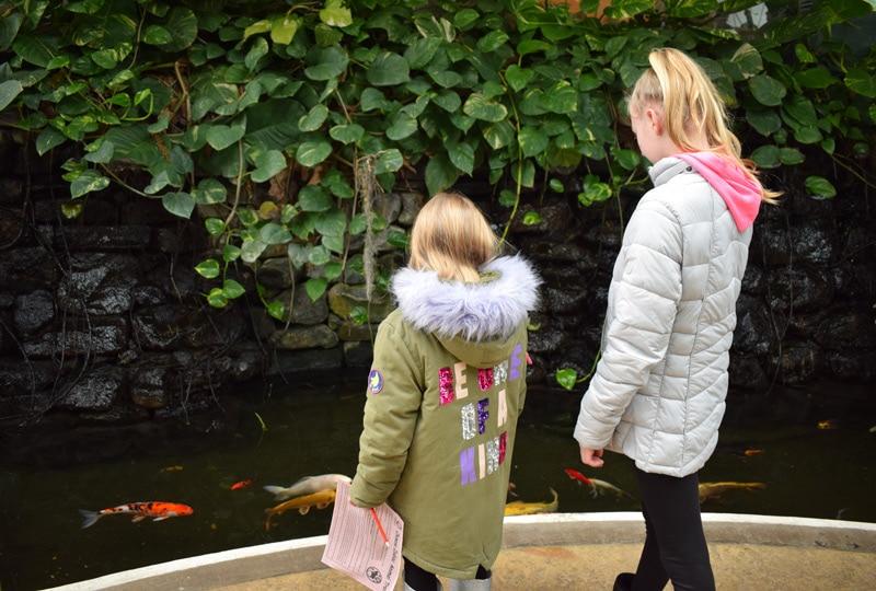 Sunderland Winter Gardens