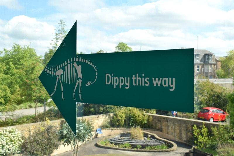 Dippy on tour Newcastle
