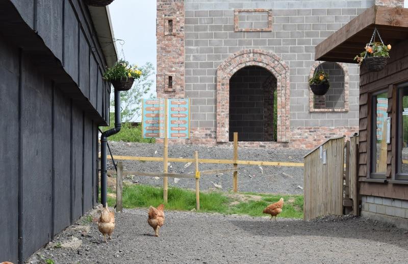 whitehouse farm centre events