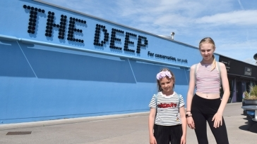 The Deep Hull | Things to do in Hull